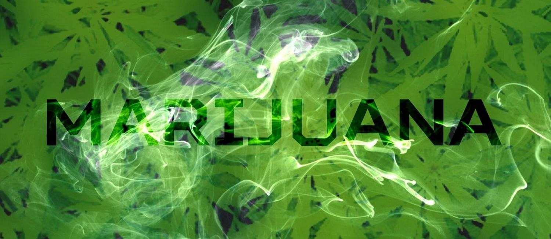 Co zawiera marihuana lecznicza?